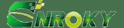 Logo Nroky